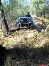 Jeep willys Pickup 1965